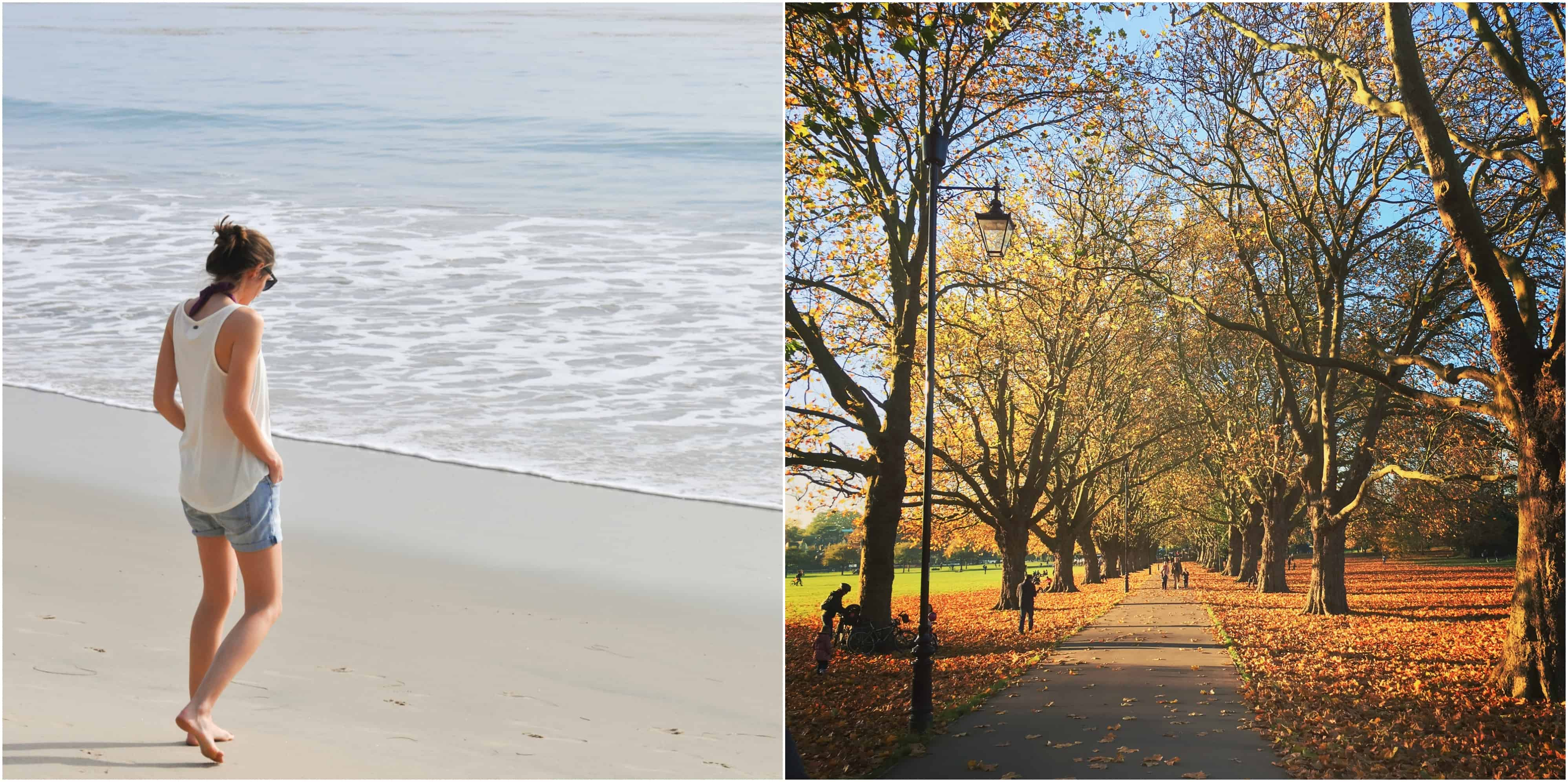 Los Angeles beach and Jesus Green