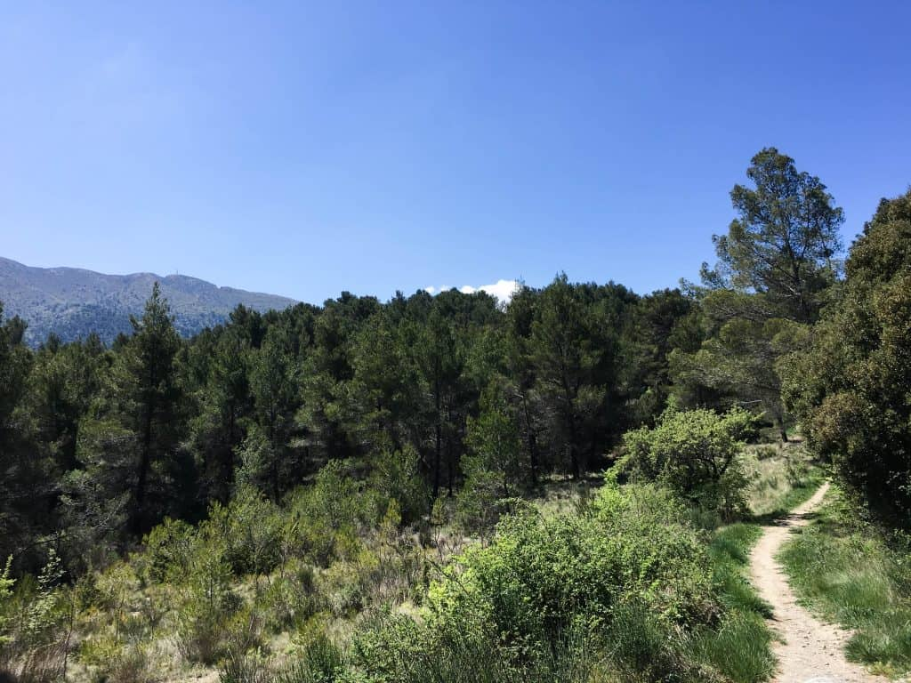 Hiking Montagne Sainte-Victoire near Aix-en-Provence | Hiking in Provence, France