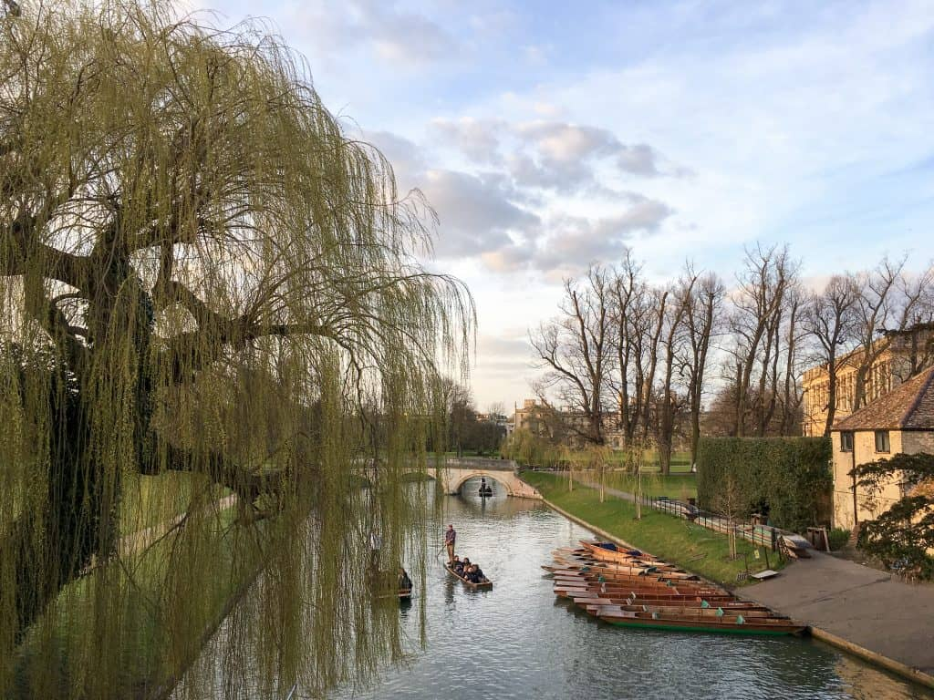 Punting on the River Cam in Cambridge, England   Oxford vs Cambridge: The best English University town