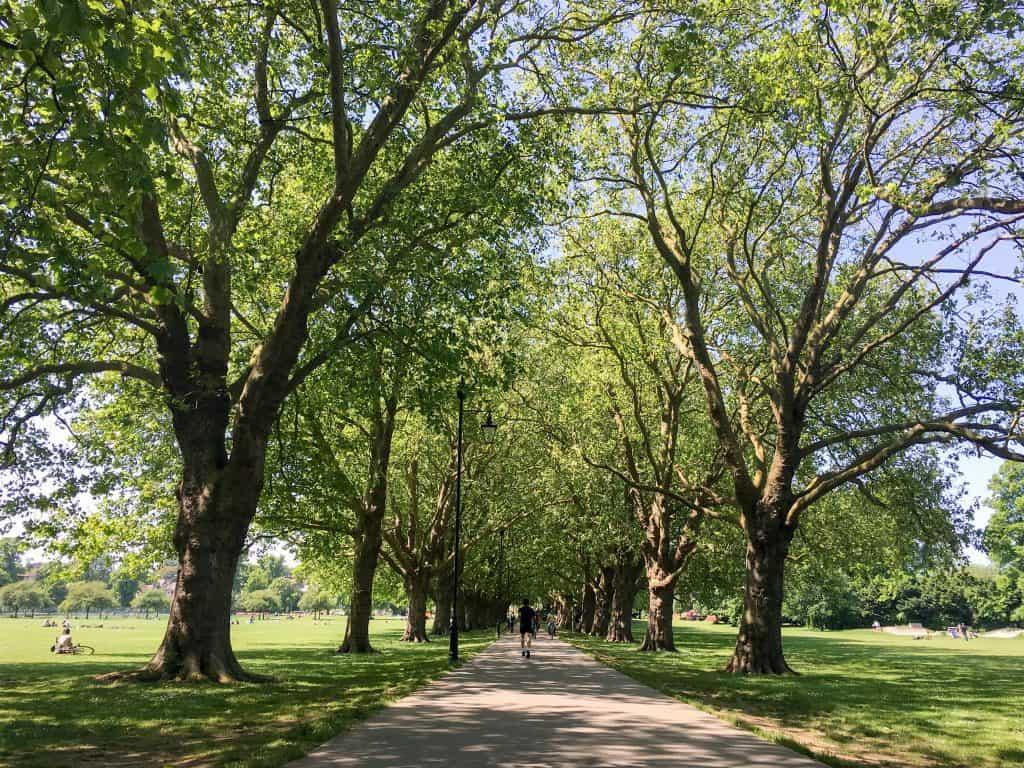 Jesus Green in Cambridge, England   Oxford vs Cambridge: The best English University town