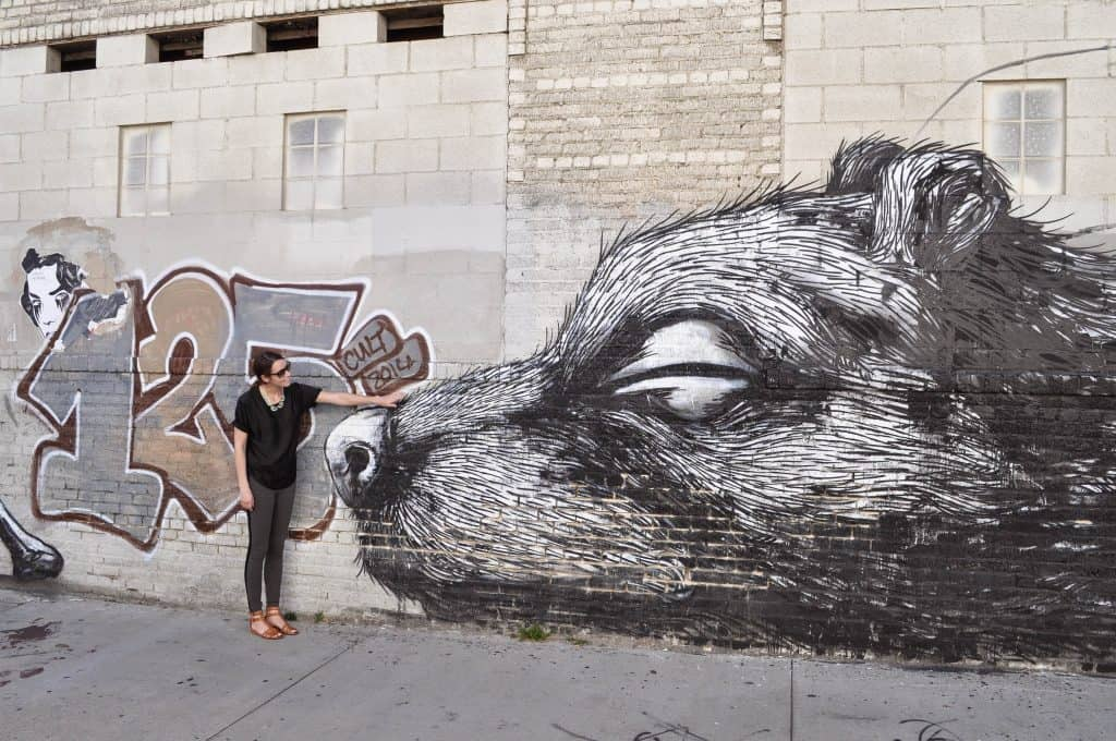 Street art mural in downtown Los Angeles by Roa | Street Art Tours: the best way to discover the living city