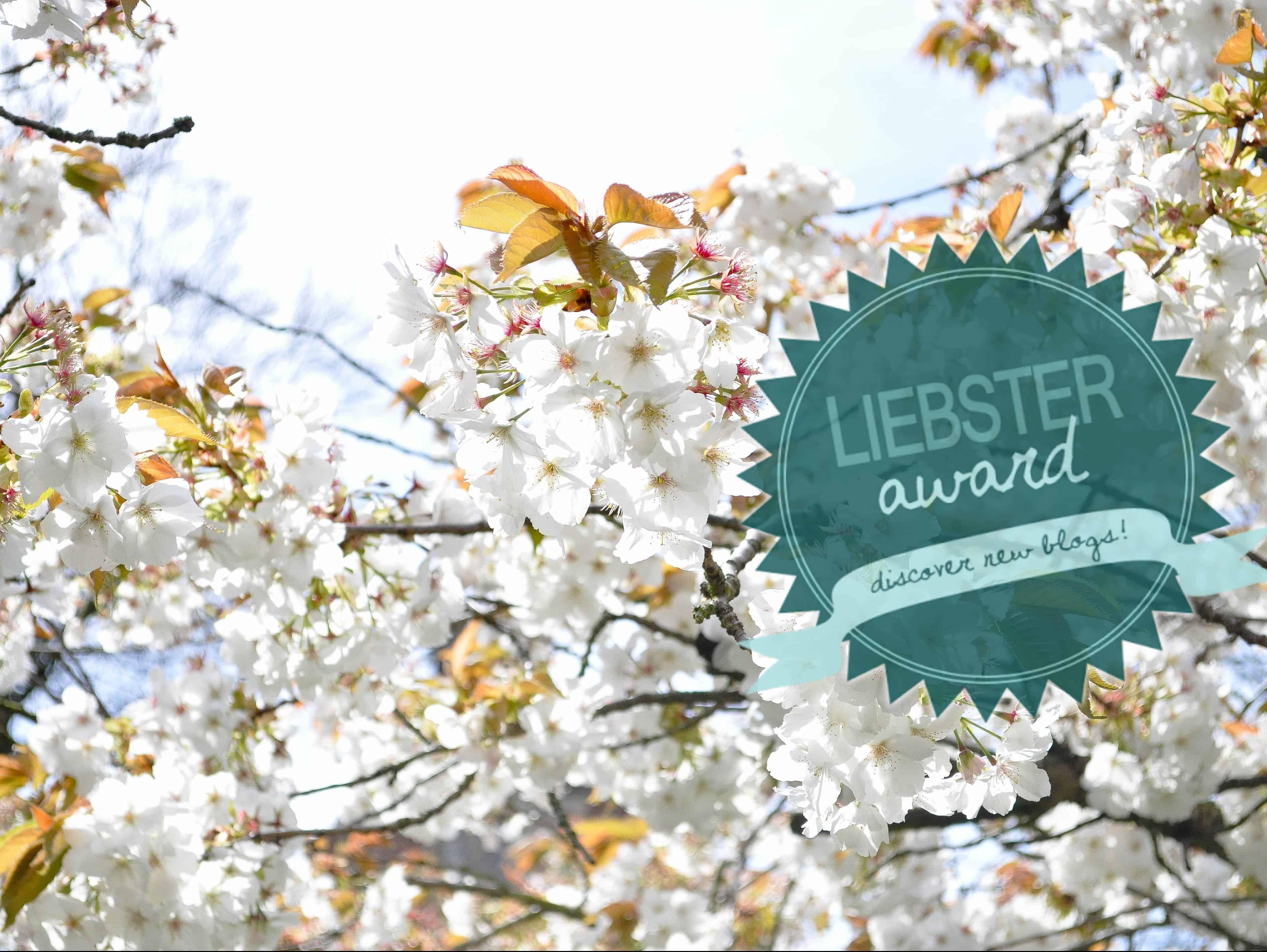 We've been nominated for a Liebster Award!