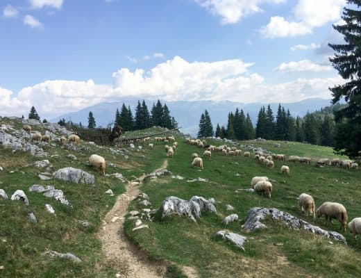 Hiking in Piatra Craiului Mountains, Romania