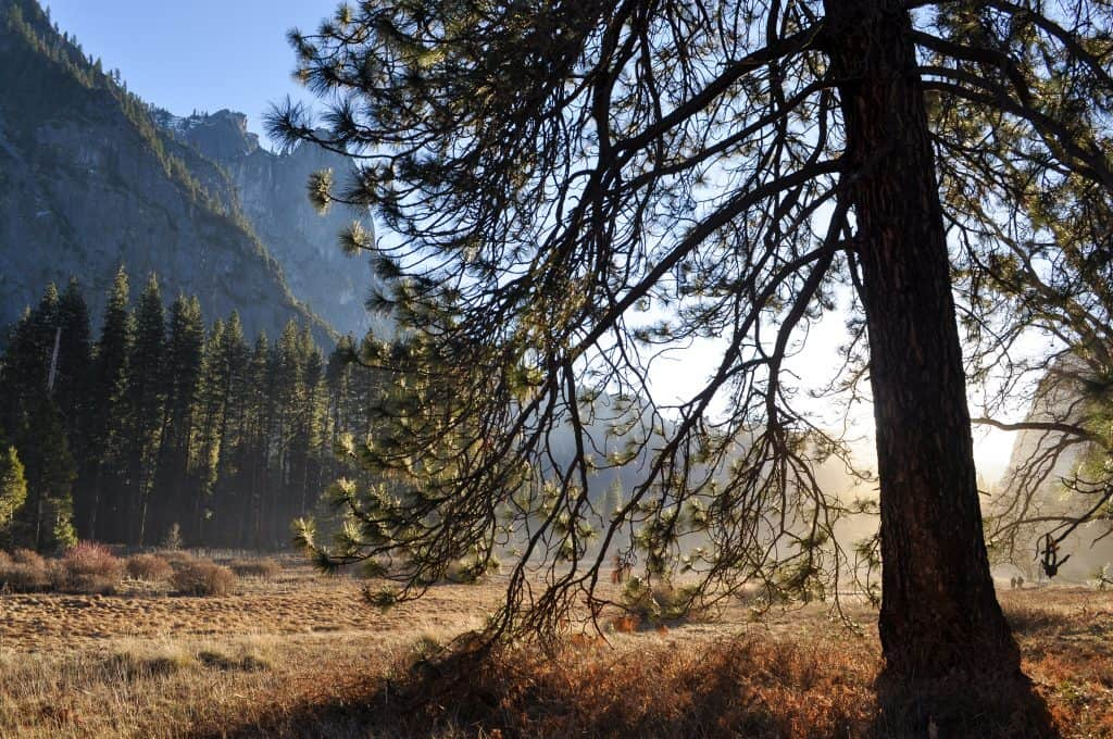 Winter Hiking in Yosemite | Yosemite Valley