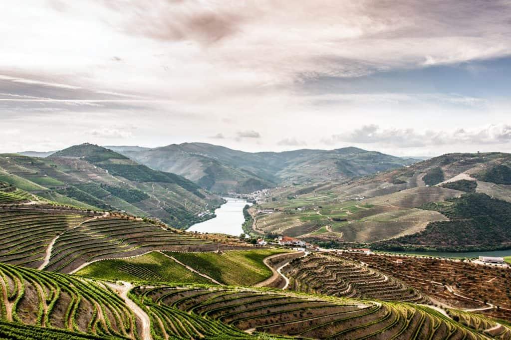 Долина Дору, дом хорошего портвейна | 19 лучших мест для посещения в Португалии 19 самых красивых городов и городов для посещения в Португалии 19 Самых Красивых Мест Для Посещения В Португалии 2 The Douro Valley vineyards 1024x682