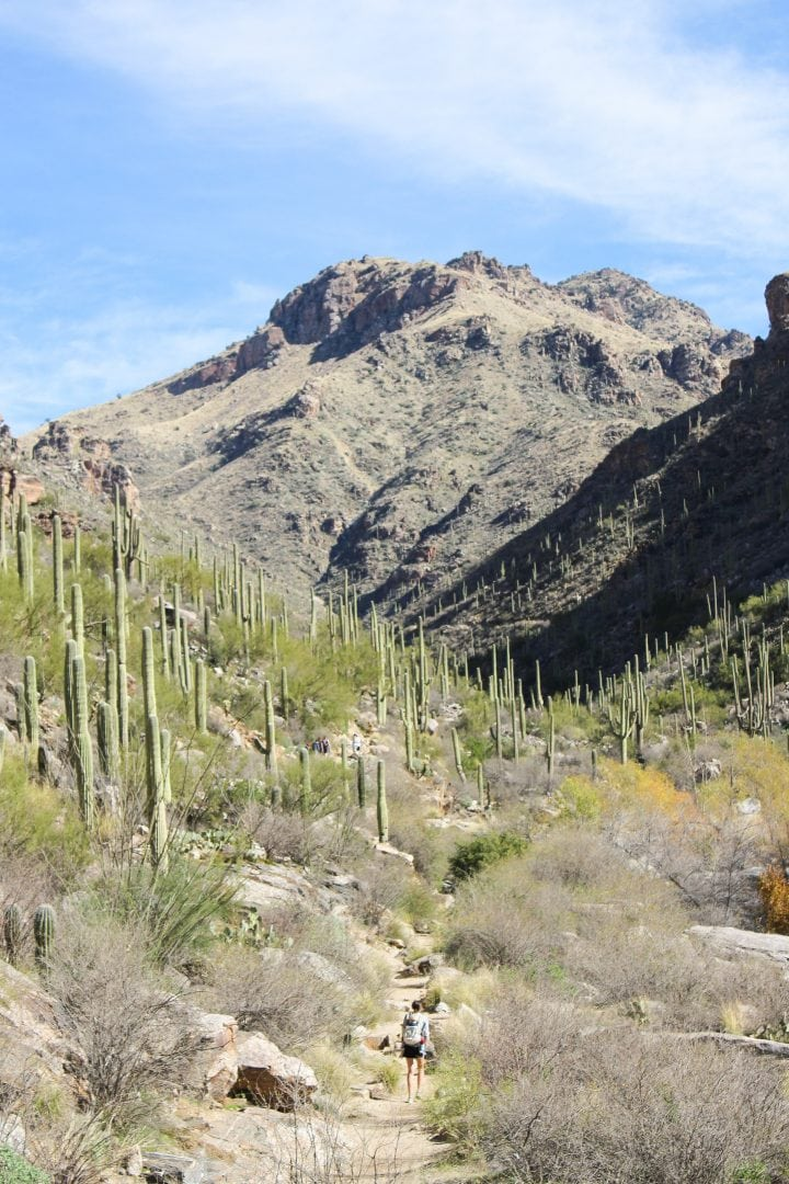 Seven Falls Trail in Sabino Canyon | Hiking in Tucson, Arizona