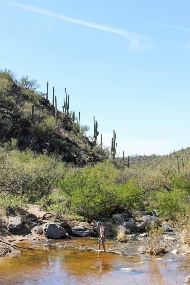 Seven Falls Trail in Sabino Canyon | Hiking in Tucson, Arizona