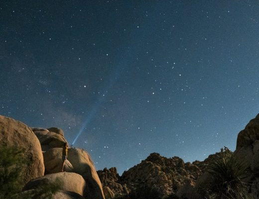 Star gazing in Joshua Tree   A Guide to Summer Camping in Joshua Tree National Park, California