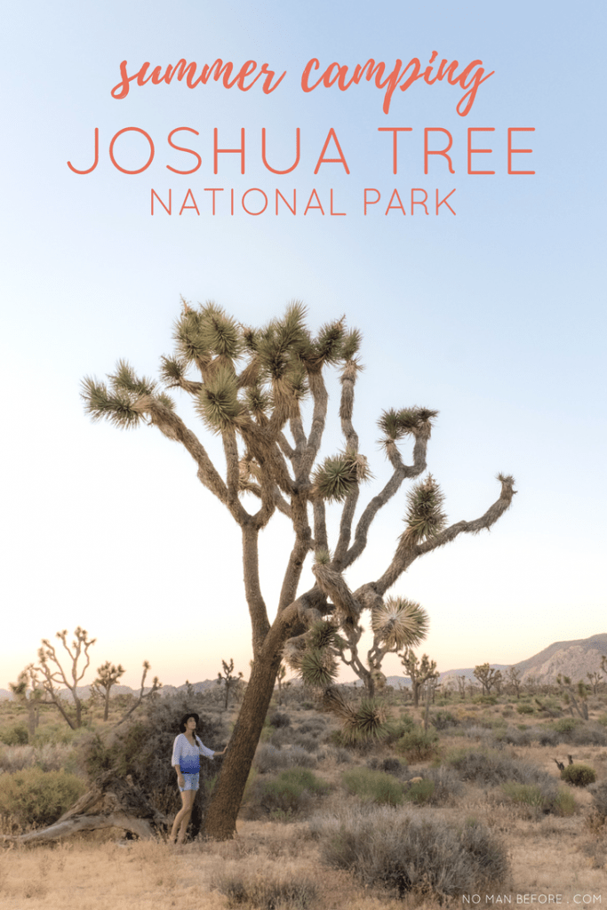 A Guide to Summer Camping in Joshua Tree National Park, California