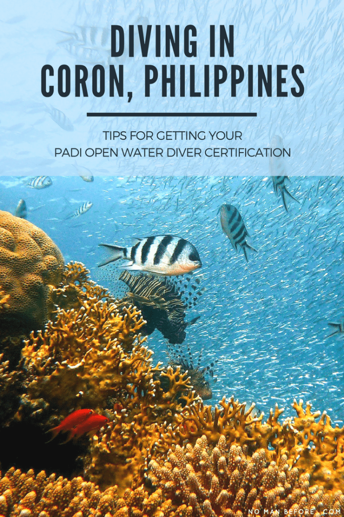 Diving in Coron, Philippines | Tips for Diving and Getting your PADI Open Water Diver Certification in Coron