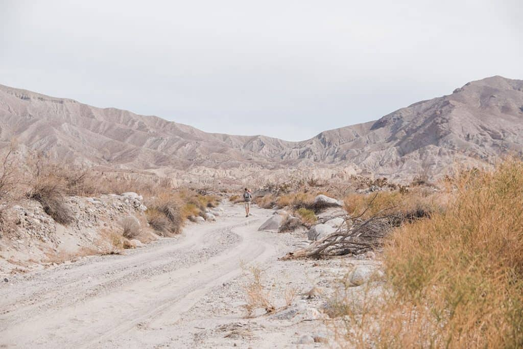 Hiking in Anza Borrego Desert State Park | A Complete Guide to Anza-Borrego Desert State Park