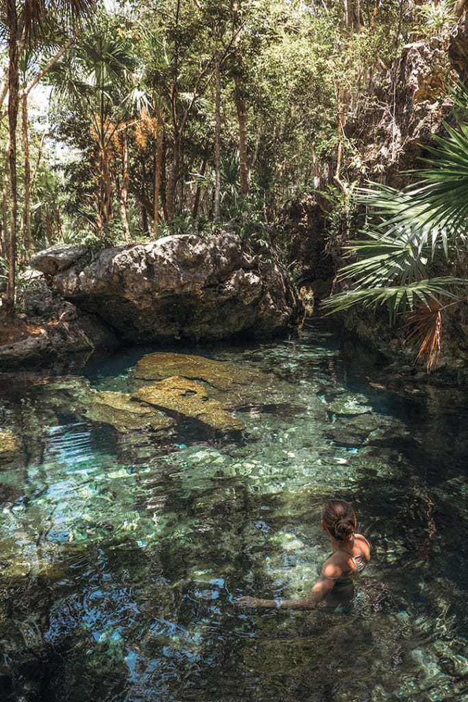 Swimming in Cenote Jardin del Eden near Tulum Mexico