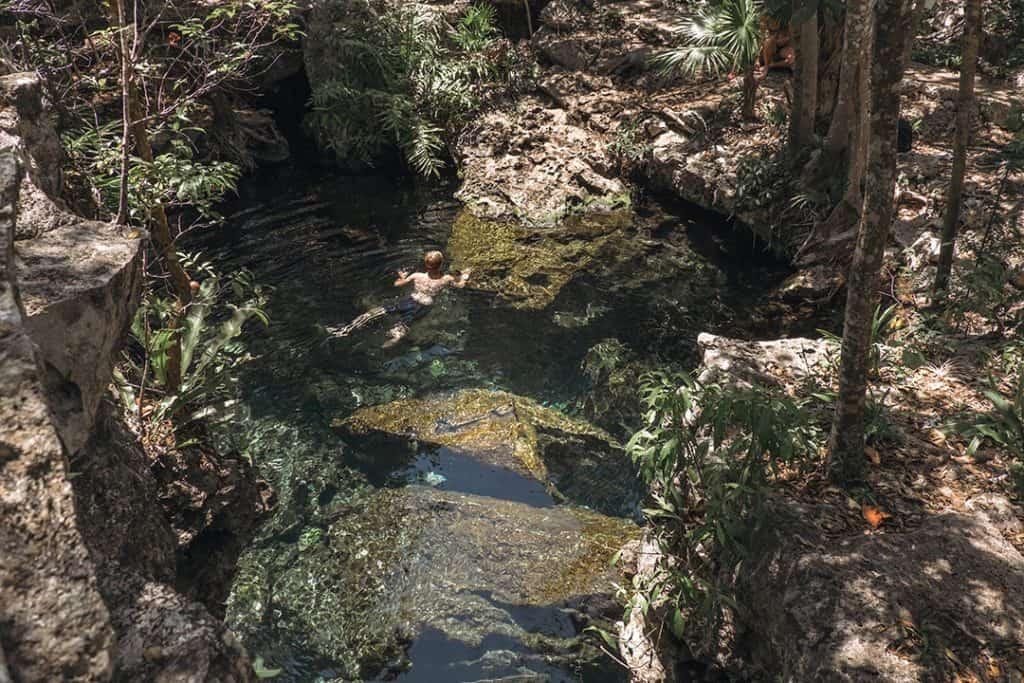 Swimming in Cenote Jardin del Eden near Tulum Mexico