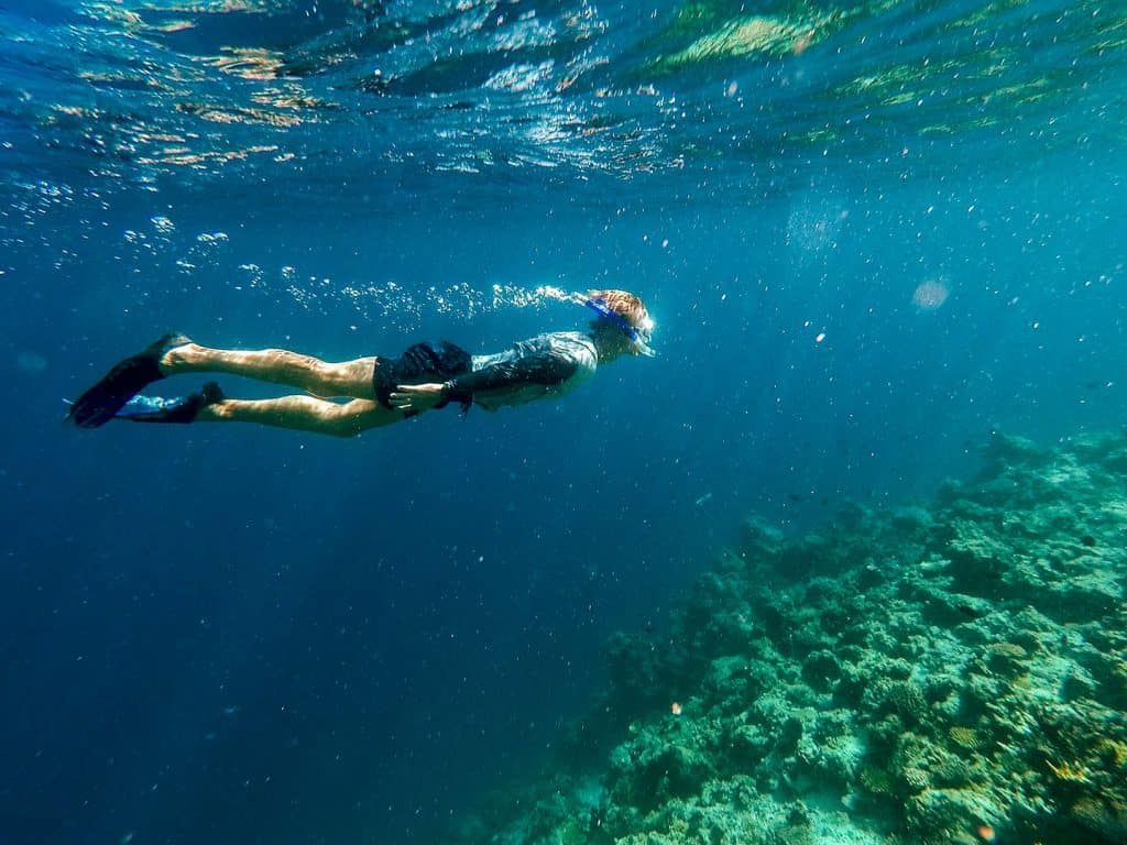 Coral Reef in El Nido, Philippines | A Guide to Buying Reef-Safe Sunscreen