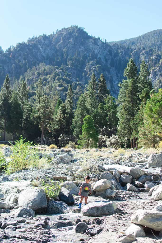 Cabin in Forest Falls, California   Tips for booking the coolest rentals and camping spots in Southern California