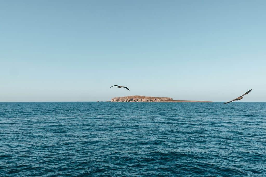 Marieta Islands Tour | The Best Way to Visit Las Islas Marietas near Puerto Vallarta, Mexico