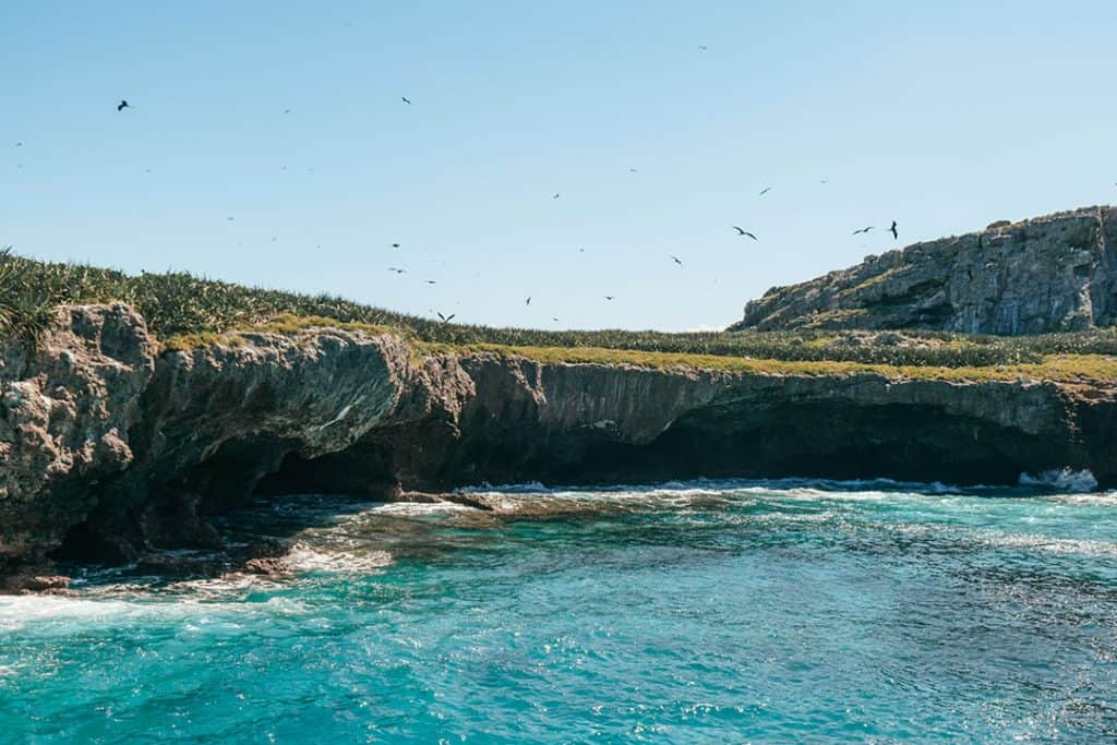 Bird watching near Marieta Islands | Riviera Nayarit, Mexico