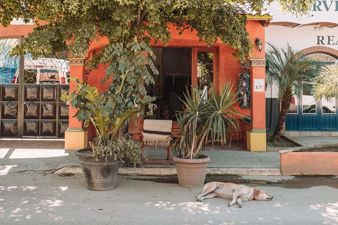San Pancho in Riviera Nayarit, Mexico