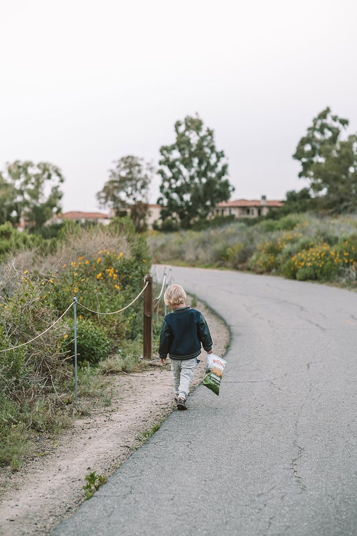 Child walking along coastal trails in Crystal Cove State Park, California