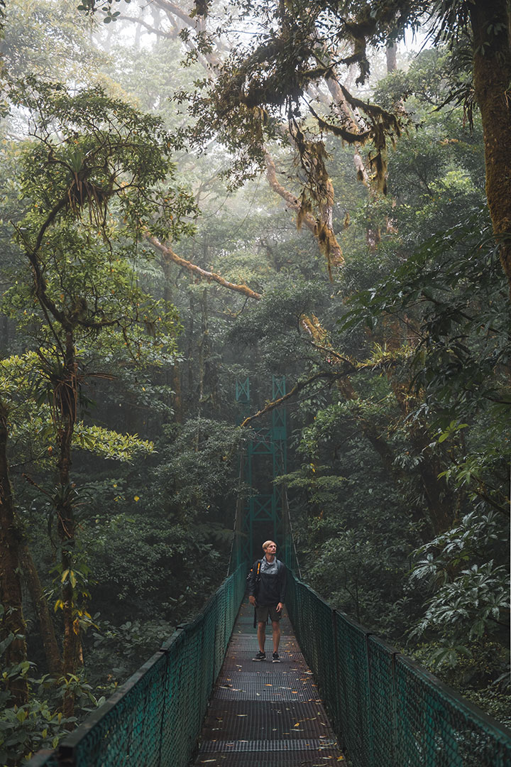 Hanging Bridges in Cloud Forest in Costa Rica