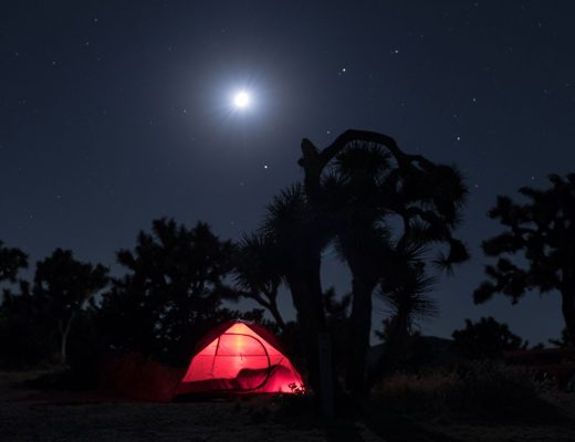 Tent lit up at night at Joshua Tree National Park