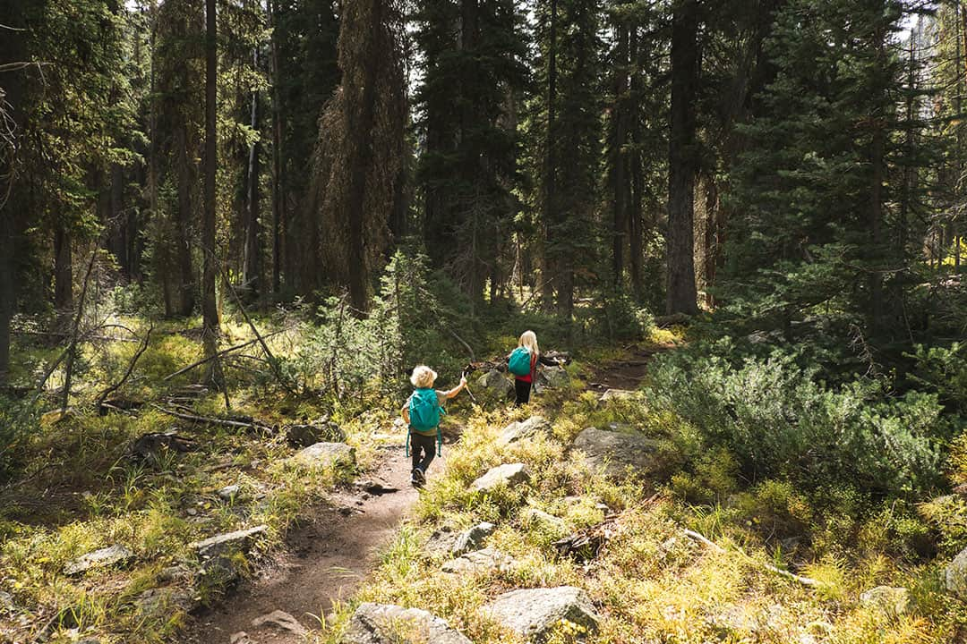 Kids Hiking along the Tin Cup Hiker Trail in Idaho