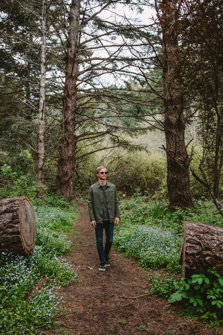 Hiking through Butano State Park in sustainable outdoor clothing brand Toad&Co