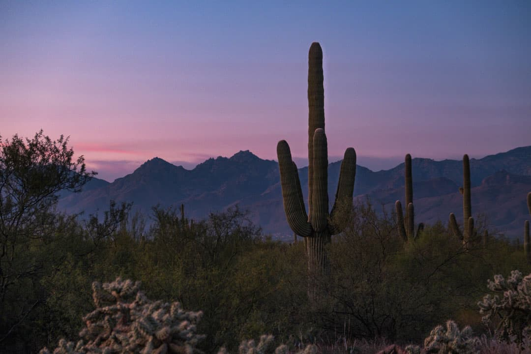 Sunset on a hiking trail in Tucson, Arizona
