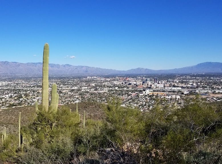 Tumamoc Hill Trail in Tucson
