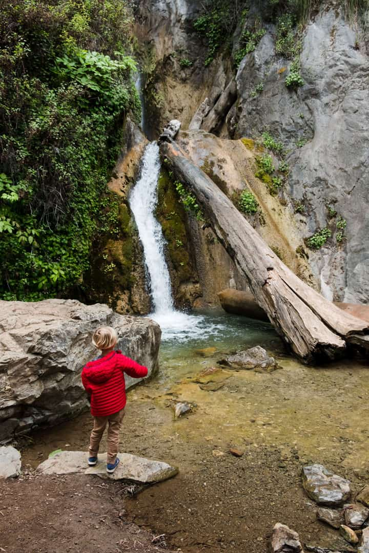 Limekiln Falls in Big Sur, California