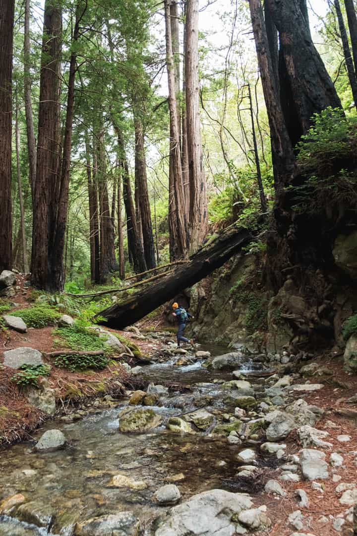 Limekiln Creek in Big Sur, California