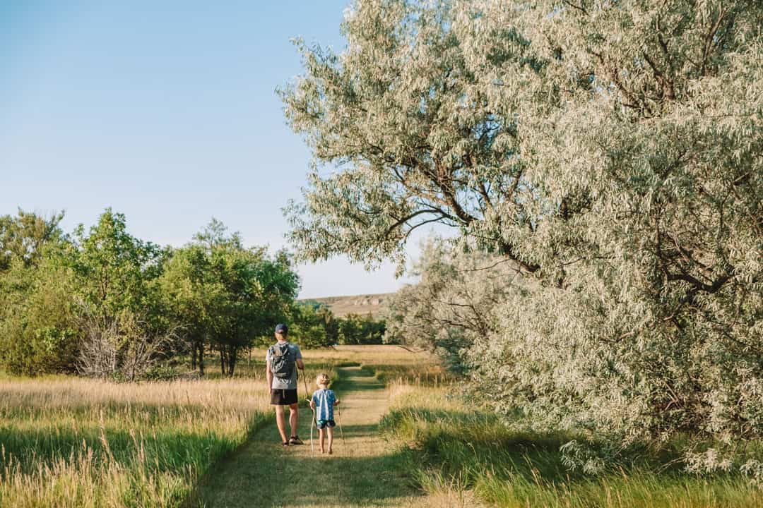 Grasslands in Lewis and Clark State Park on Lake Sakakawea