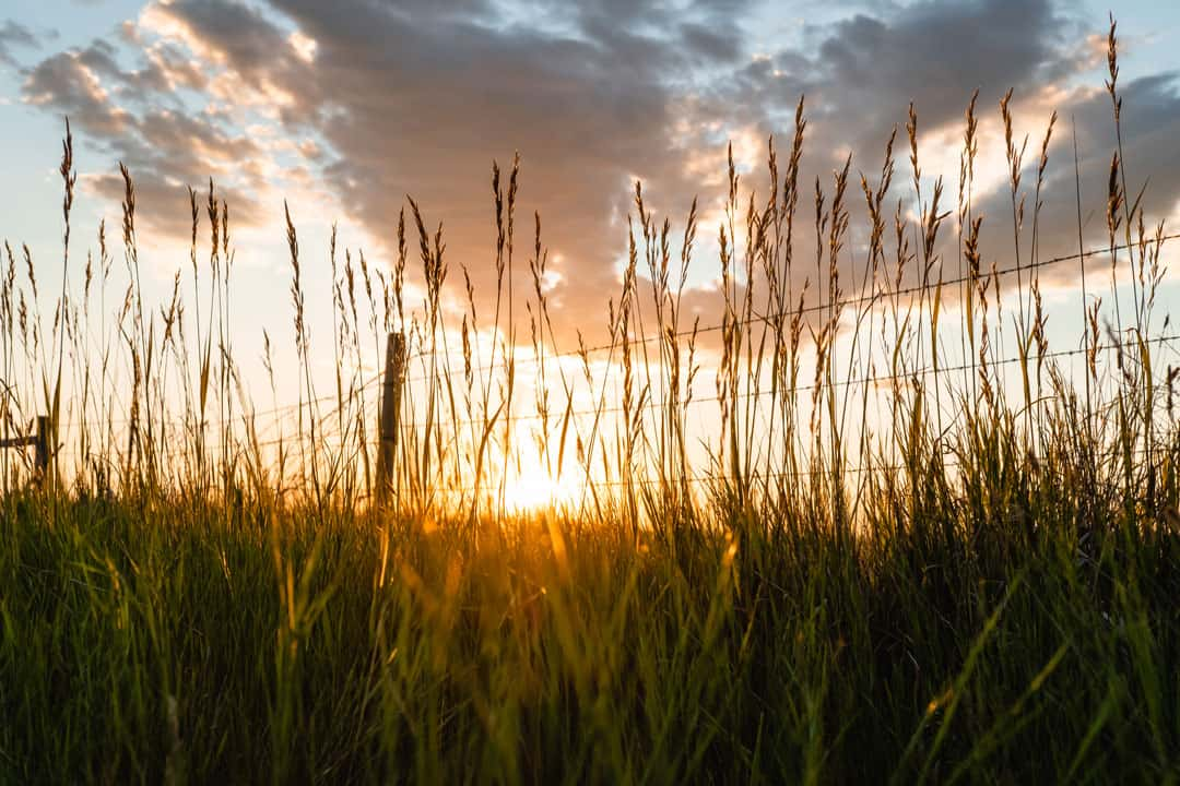 Sunset near Williston, North Dakota