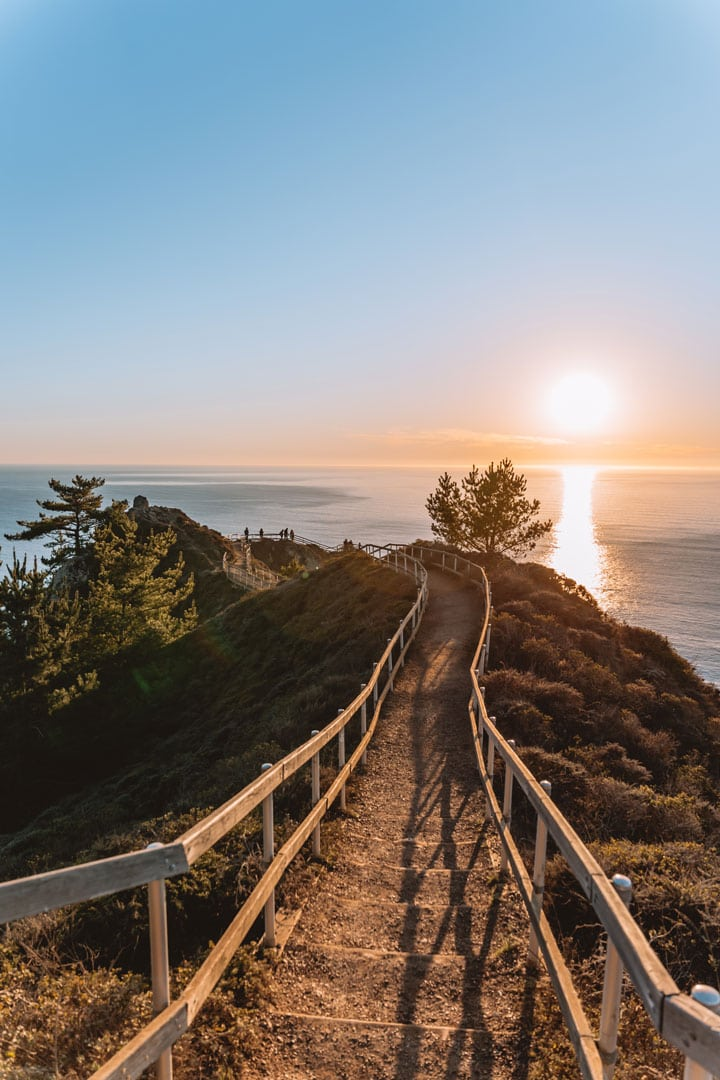 The trail at Muir Beach Overlook