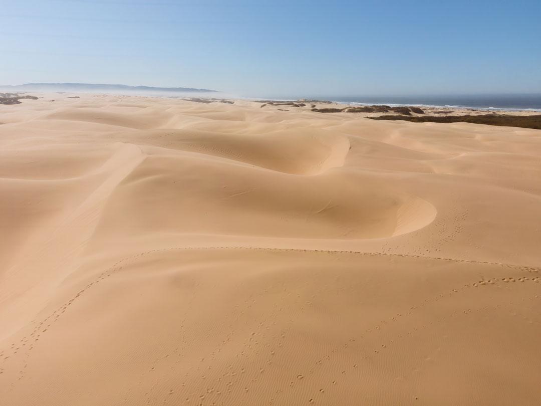 Pismo Beach Sand Dunes
