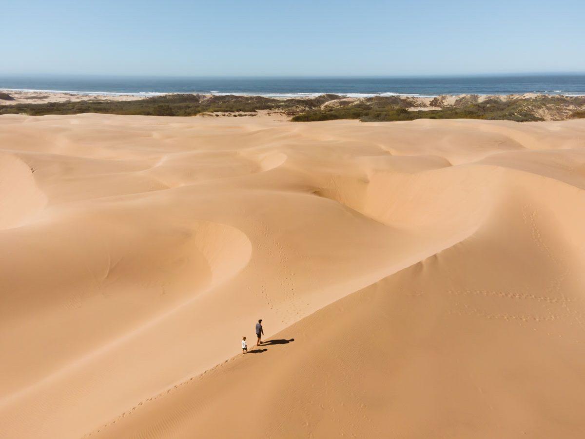 Pismo Beach Sand Dunes The Essential Guide to Visiting Oceano Dunes